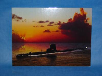 SeaFoxSS-402LED.jpg